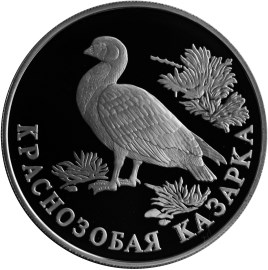 1 рубль 1994 – Краснозобая казарка